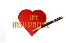 生命保険料が半額以下になる?収入保障保険