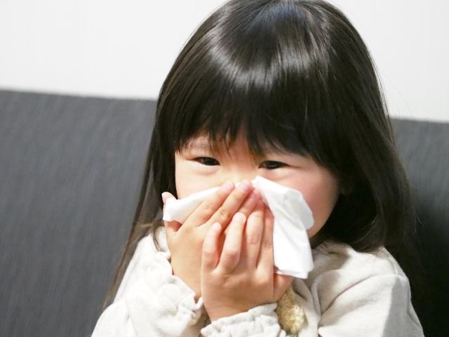 花粉症、鼻炎気味、乾燥肌の人へ べにふうき茶 抜群の効果(個人の感想です)
